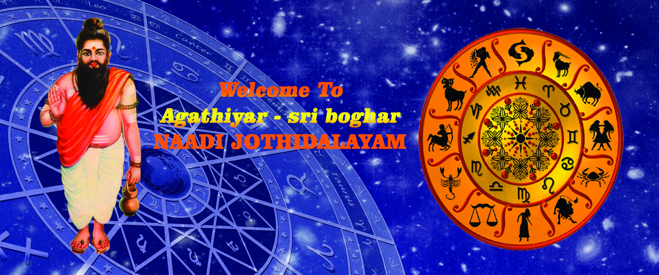 Nadi Jothidam in chennai || Nadi Jothidam in Anna Nagar||Nadi